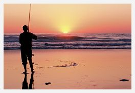 Fishing in Gisborne from your Gisborne Motel
